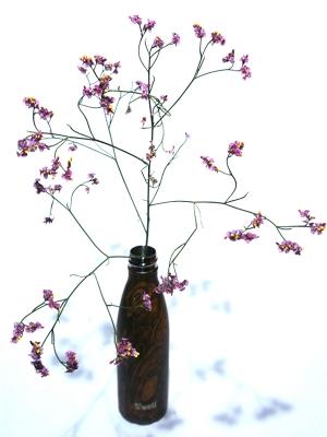 Swell Bottle 17oz  Wenge Wood
